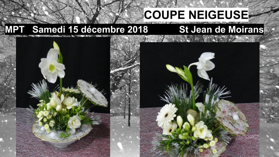 Coupe neigeuse