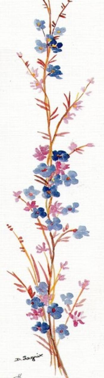 fleur115