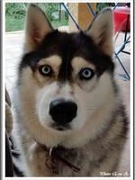 Louska (4 ans)
