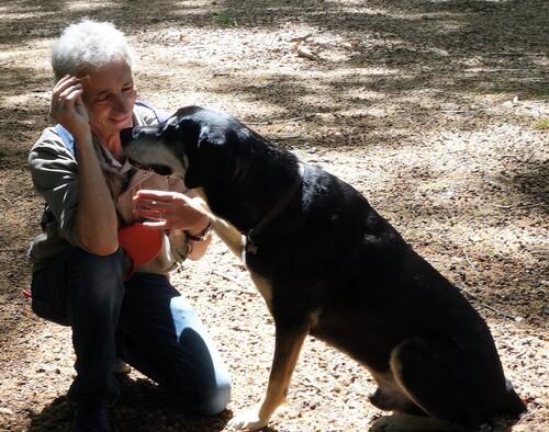 Mon copain est parti au paradis des chiens