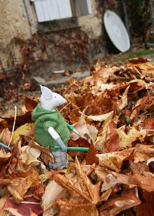 Corvée de feuilles