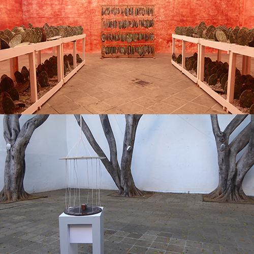 OAXACA MUSEO : ENTRÉE EN COLOR - 1