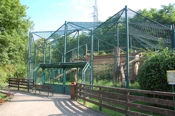 Zoo Saarbrücken 2012 006