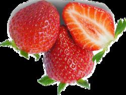 Fruits et papillon, pas à pas 1