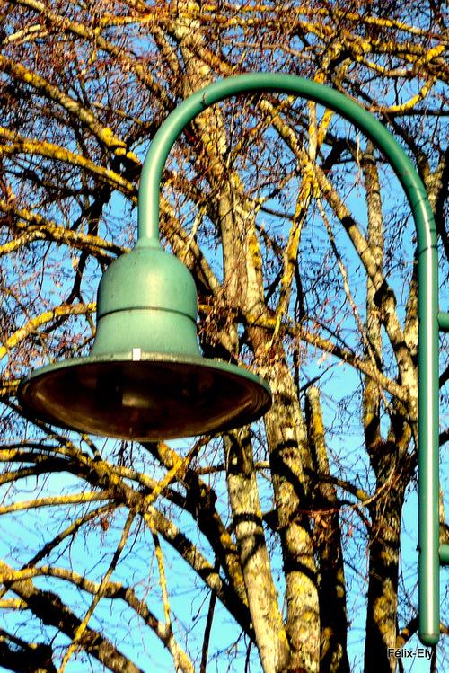 Le lampadère