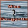 Miss bougeotte