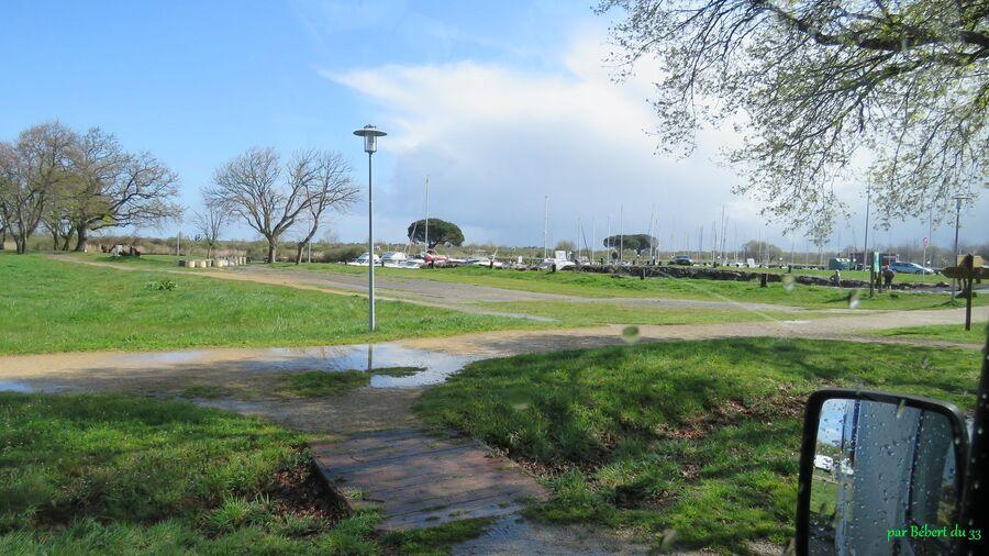le parc ornithologique du Tech (33)-2