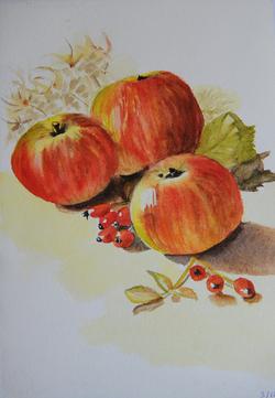 Dans les pommes !