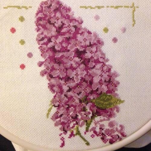 le Lilas de lilipoint
