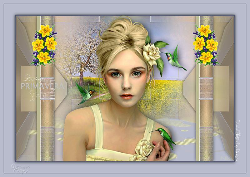 *** Les 411-La Primavera ***