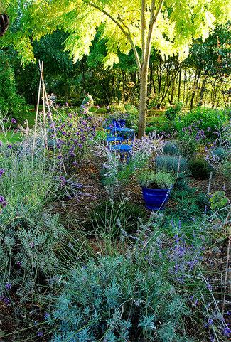 Magical Garden chez Duo pour un jardin.