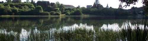 L'étang Taureau