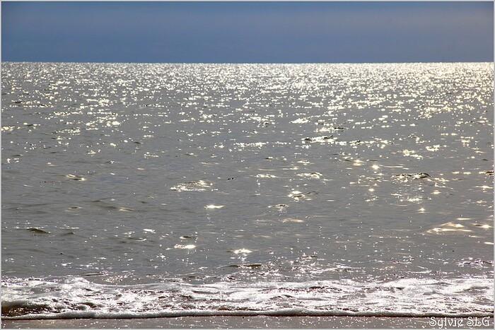 L'Aiguillon sur Mer