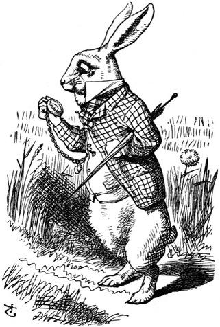 Des histoires de lapin- suite