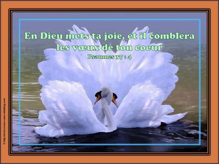 En Dieu mets ta joie - Psaumes 37 : 4