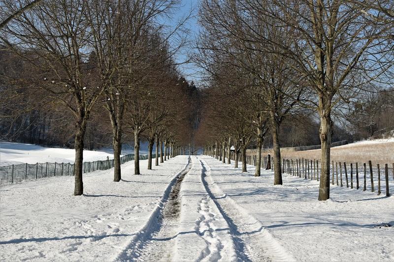 2017.01.19 Ambiance neige!
