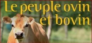 le-peuple-ovins-bovins.JPG