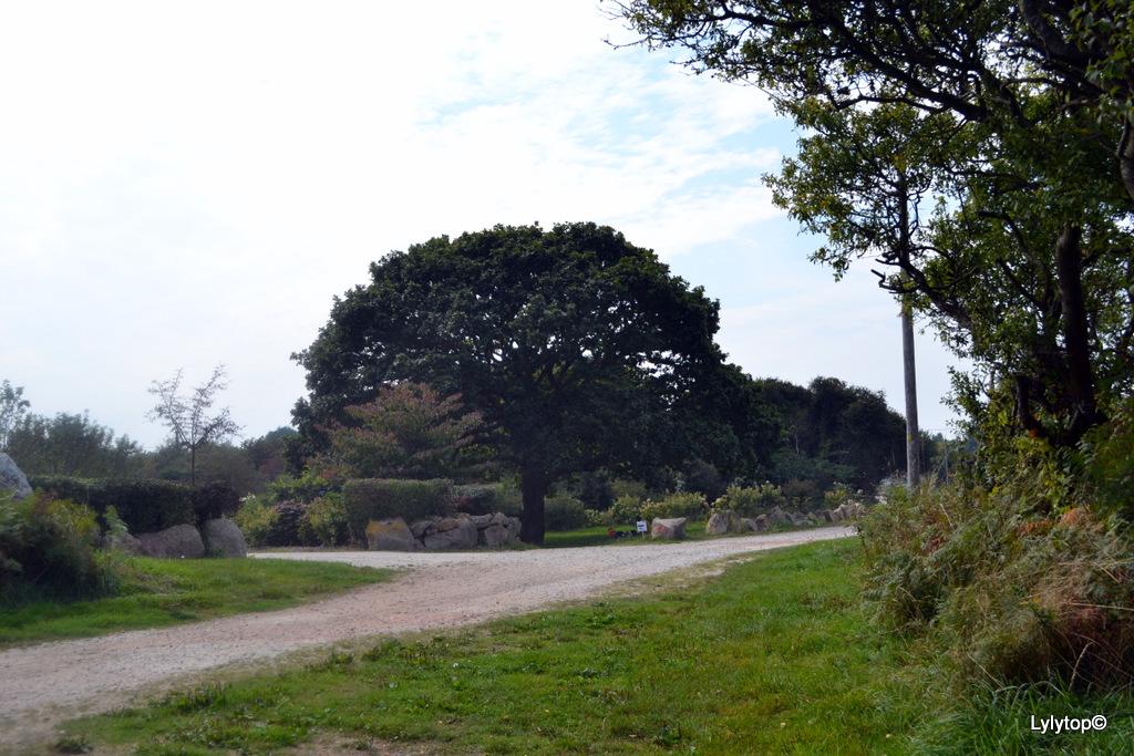 Fermanville
