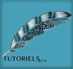 TUTORIELS ANGEPB