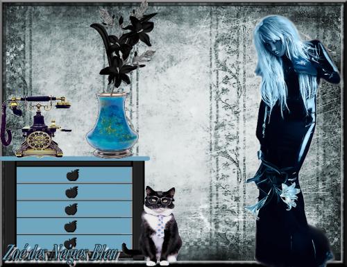 defi : BONUS Bleu-blanc-noir