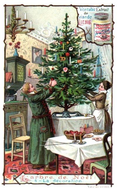Le sapin de Noël et la déforestation