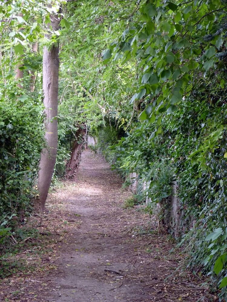 Rue de Paradis