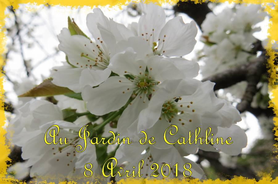 Au Jardin et Avec la Lune du 11 au 20 Avril