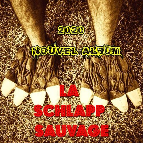 2020 : neien Album / nouvel album !