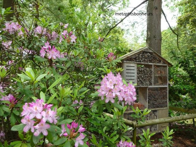 ...au Jardin Botanique...