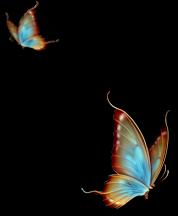 *** La dame aux papillons ***