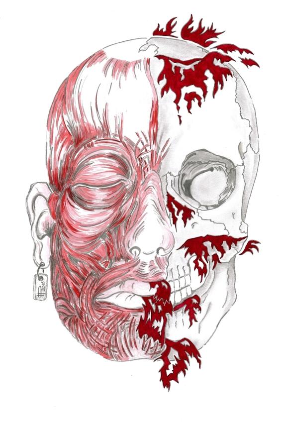 * COULEURS * « Gaspard l'Écorché » - Étude anatomique