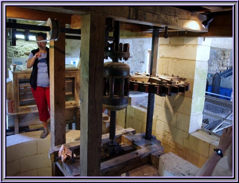 le Moulin ndes loges à St Just Luzac  (charente maritime)