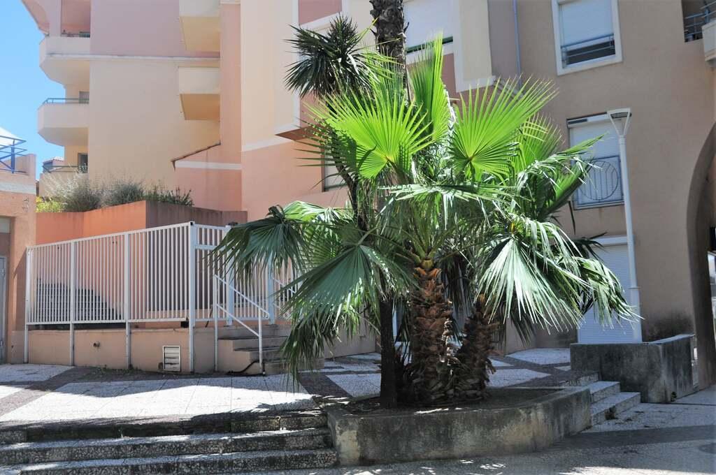 Port Fréjus...(3)...A suivre