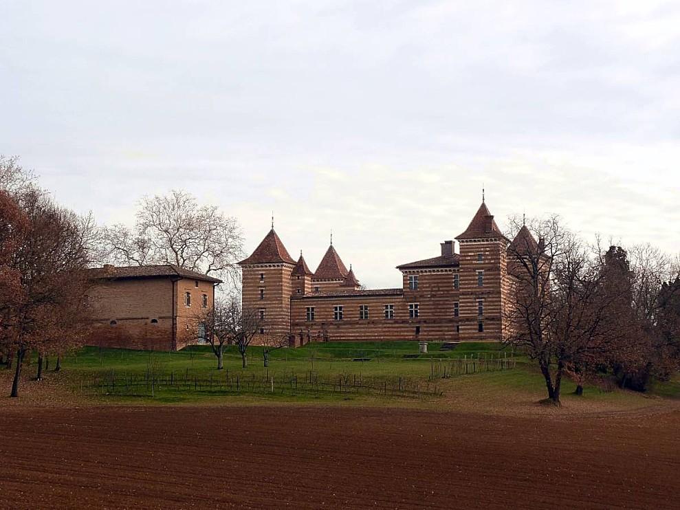 Laréole 29-12-2010