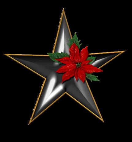 Etoiles de Noël 2019
