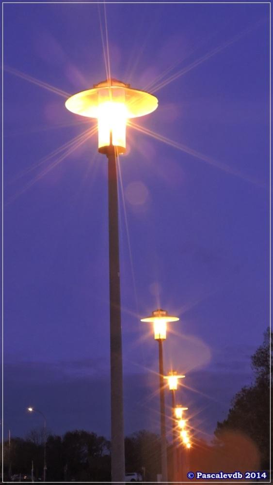Ambiance lumières au Teich - 6/6