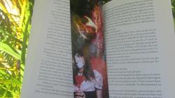 """""""Minuit"""" T.4 de Lara Adrian"""