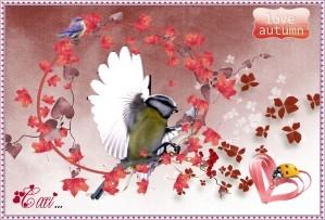 oiseau-et-autom.jpg