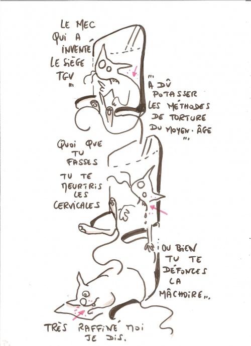 Chat_TGV