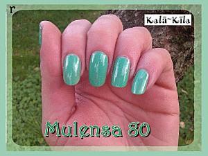 mulensa-80-4.gif