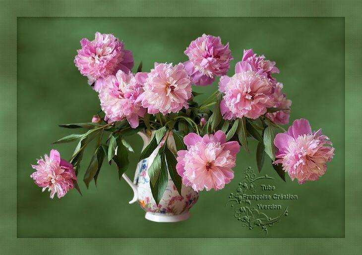 Fleurs (09 à
