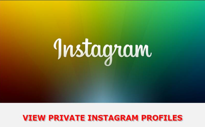 profile picture instagram viewer