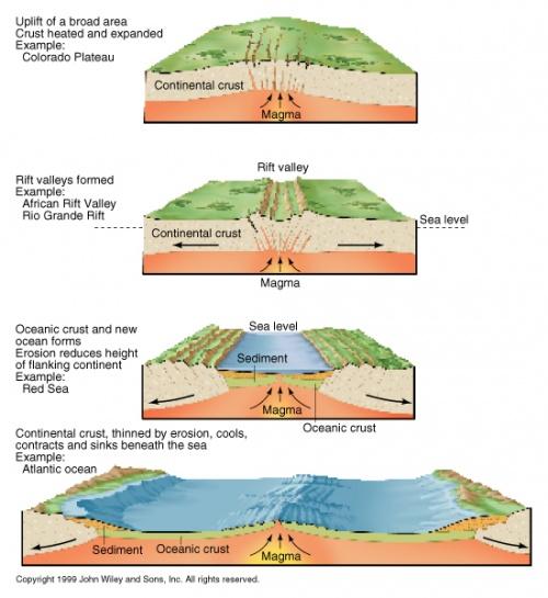 dorsale océanique
