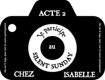 Silent Sunday #52