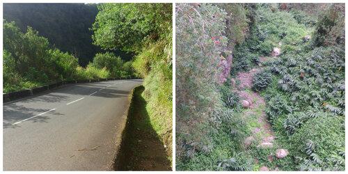 Une boucle vers la Ravine des Avirons et de la Ravine du Trou (SORTIE VTT)