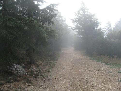 Le GR2013 dans la brume ...