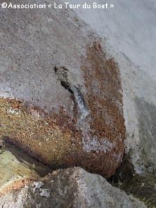Coup d'oeil : Des indices dnas les murs