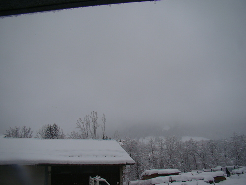 tombe la neige!!!!!