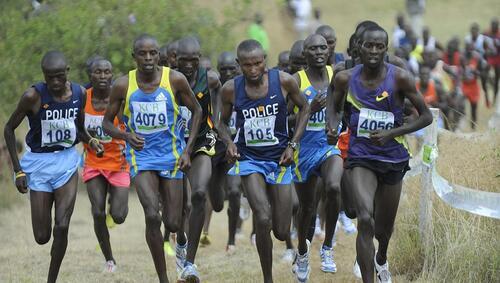 Championnats d'Afrique de Cross