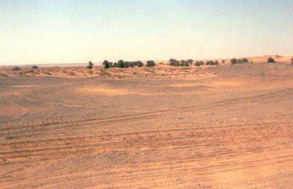 Noël au Sahara : dernier soir à Timimoun